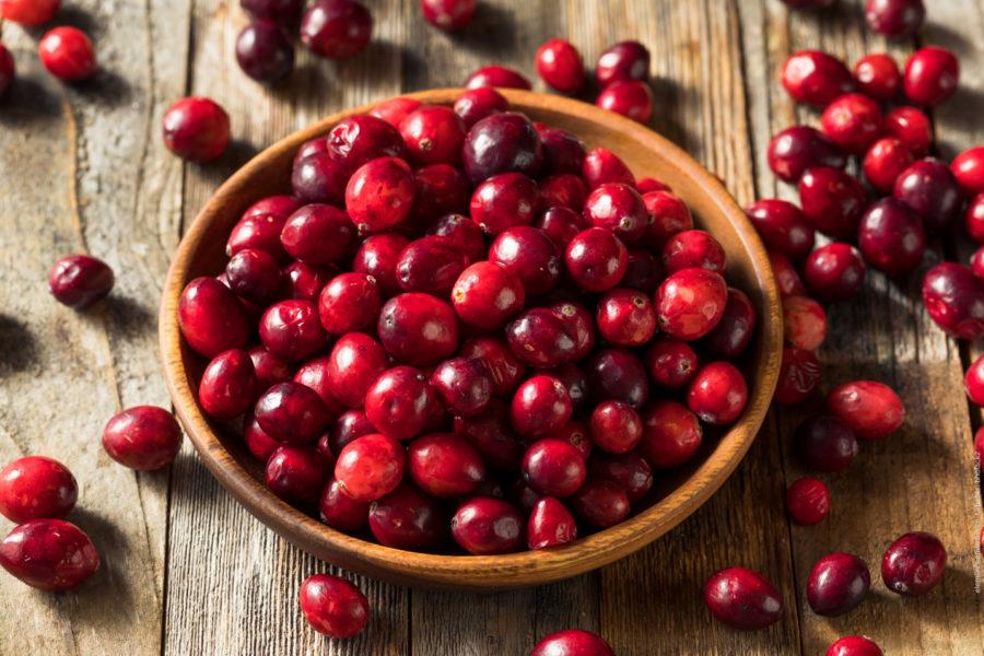 Cranberries anbauen - mit Cranberries einer gesunden Ernährung nachgehen und eine positive Wirkung erzielen