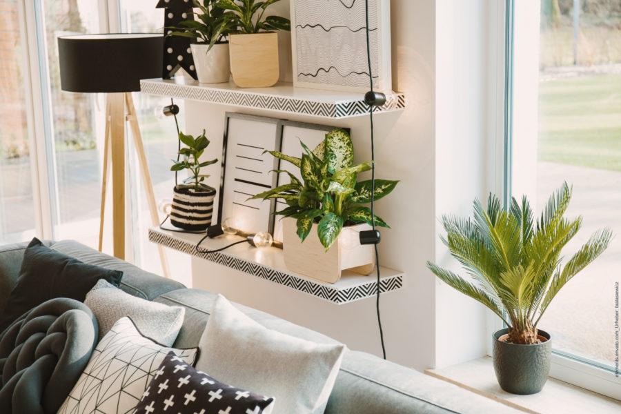 Räume selber gestalten - mit kreativen Ideen ein Zuhause zum Wohlfühlen schaffen