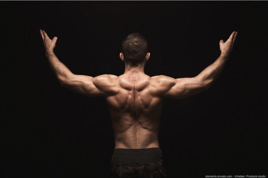 Das Muskelaufbau Buch von Christian Kierdorf